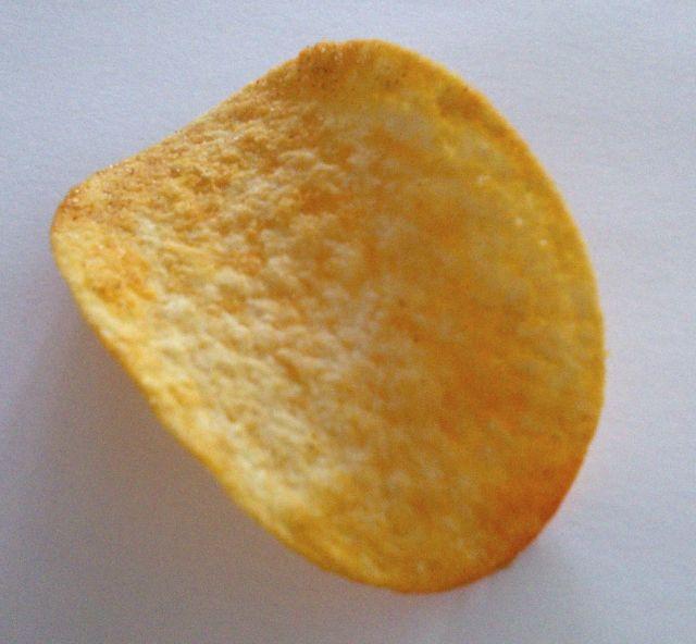 a single potato chip